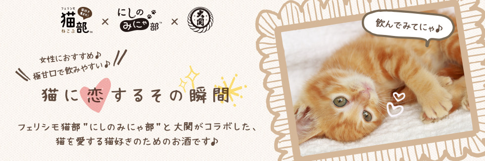 猫に恋するその瞬間